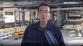uzbekistan TV report video cover